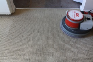 Absorb Carpet Cleaning Coventry For Cleaner Carpets Call Us